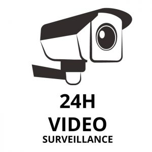 video-surveillance