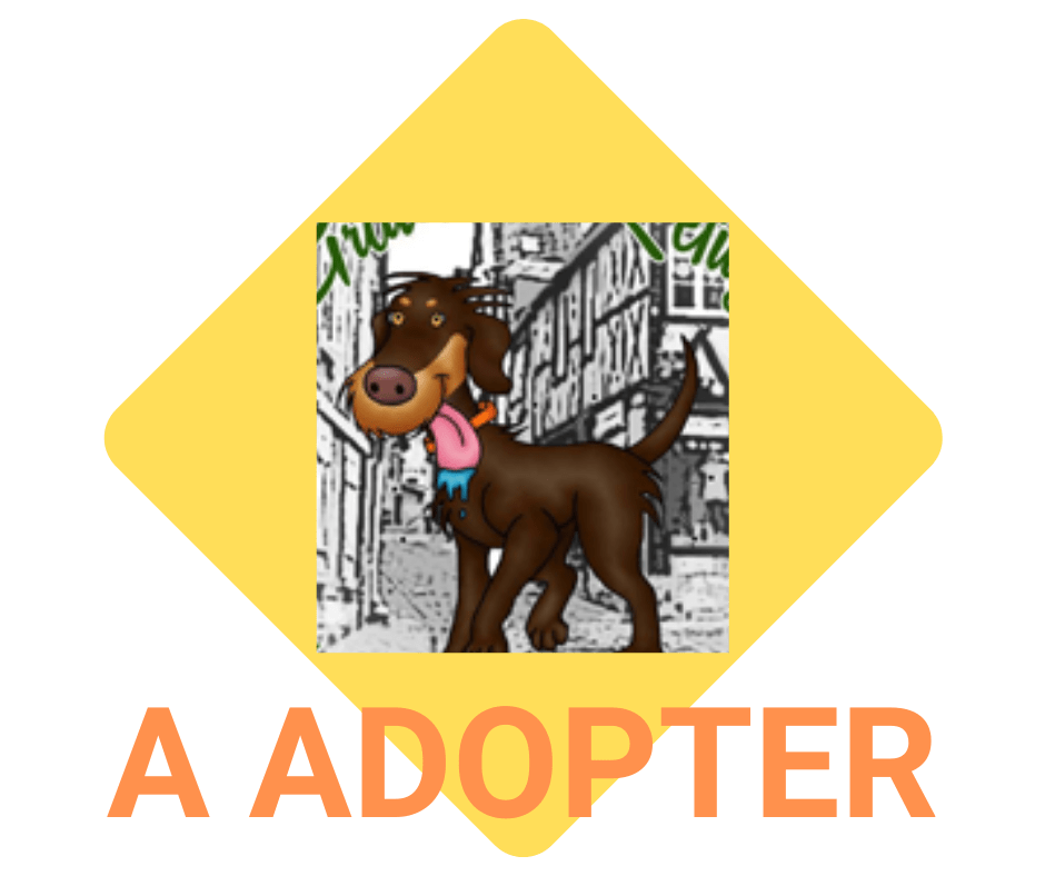 Loulous à adopter