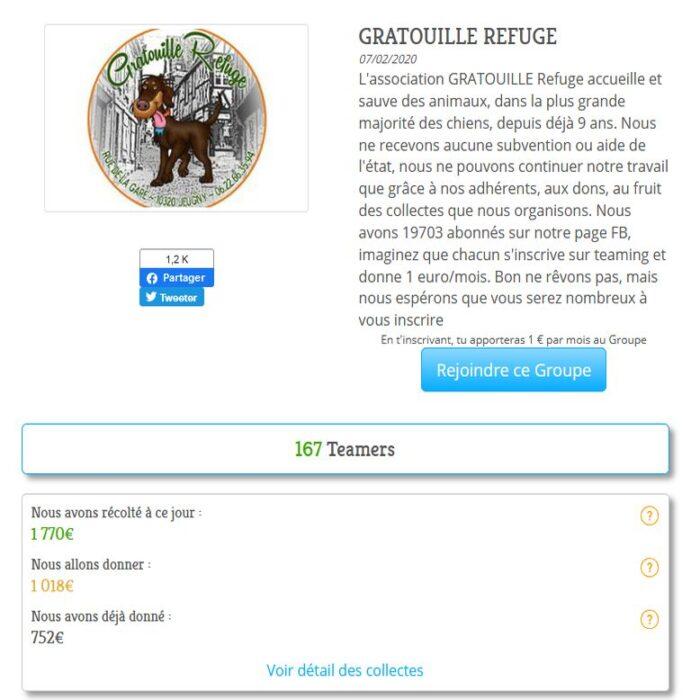 Gratouille Refuge - Dons Teaming