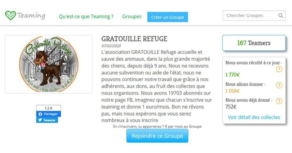 Teaming-Gratouille-Refuge